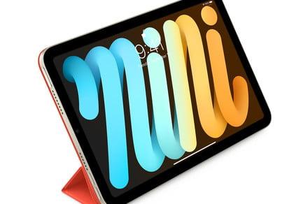 It sure looks like the iPad Mini has a 'jelly scrolling' problem